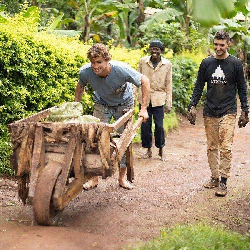 An international relations student pushes a wheelbarrow in a villiage in Tanzania.