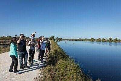 Students stand next to the St. Johns River, observing nature.