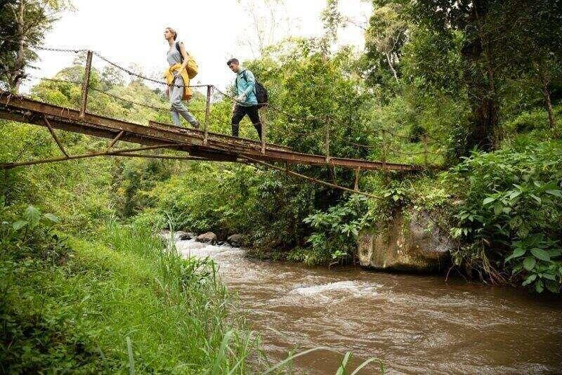 Rollins students hiking across a bridge in a jungle.