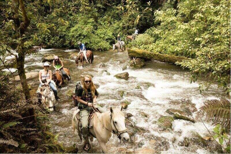 Rollins students ride horses across a Cost Rican river.