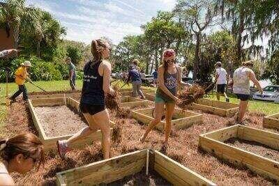 Rollins students helping to prepare the raised bed community garden on campus.