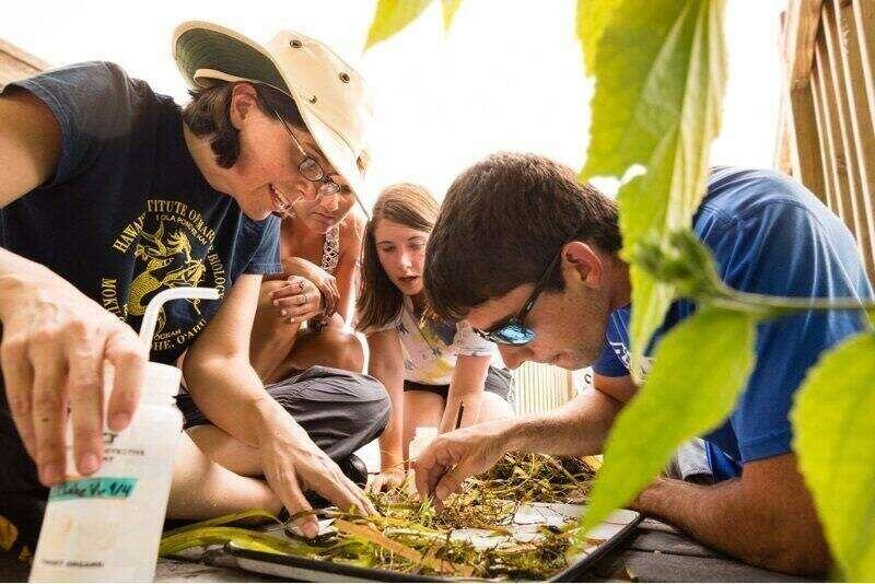 Students observing plants on a tray.